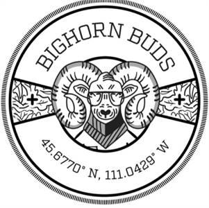 Bighorn Buds
